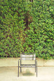 Modern steel chair in front of grass wall Stock Image