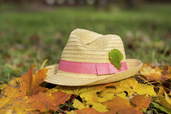 Modern straw hat in an autumn garden. Modern straw hat with pink ribbon in an autumn garden stock photos