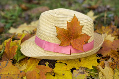 Modern straw hat in an autumn garden. Modern straw hat with pink ribbon in an autumn garden stock images