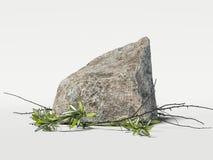Modern studio med stenen, filialer och sidor framförande 3d Royaltyfri Foto