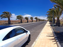 Modern style car on asphalt road through the palm alley in the southern village. Strong wind, white clouds on a blue sky. Lanzarot Royalty Free Stock Photography