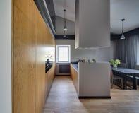 Modern style kitchen Royalty Free Stock Image
