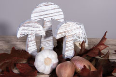 Modern stylish autumn decoration with garlic and onions Stock Photo