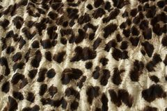 Modern stylish fabric jaguar texture close up royalty free stock images