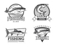 Modern Summer Fishing Logo Badge Illustration Royalty Free Stock Photos