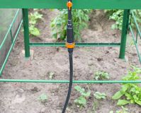 Modern system in agronomy drip irrigation to save water and freshness and nutrition of plants in the garden, dropper dispensers. Agriculture royalty free stock images