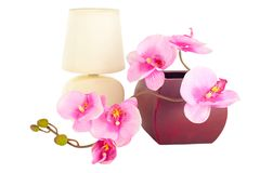 Modern table lamp and artificial orchid flower Royalty Free Stock Image