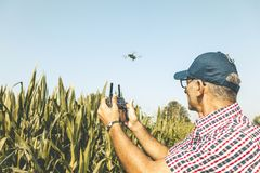 Modern Technological Farmer Analyzing The Growth Of Corn By Flying A Drone Stock Images