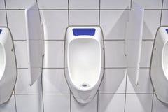Modern toalettinre med pissoarrad royaltyfria foton