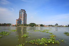 Modern tower building near Chao Phraya river Stock Photography