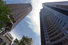 Modern Tower Glass Building Seattle Royalty Free Stock Images