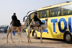 Modern and traditional transportation. The contrast of  modern and traditional transportation in Egypt Stock Photo
