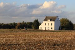 Farm house in the field, autumn landscape in Belgium Stock Image