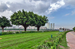 Modern tram, GuangZhou City Royalty Free Stock Images