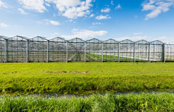 Modern and transparent greenhouse on the outside Stock Images