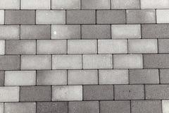 Modern trottoar för tegelstenstengångare fotografering för bildbyråer