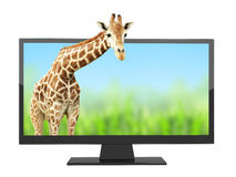 Modern TV with 3d effect on screen Royalty Free Stock Photography