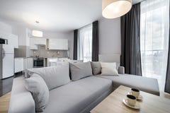 Modern vardagsrum för inredesign i scandinavian stil Royaltyfria Bilder
