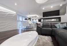 Modern vardagsrum för inredesign med kök Arkivbild