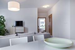 Modern vardagsrum i scandinavian stil Royaltyfria Bilder