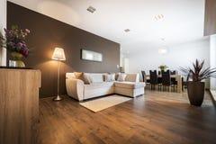 Modern vardagsrum med kök Arkivbilder