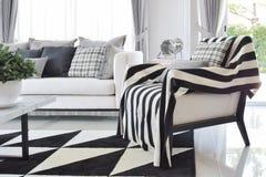 Modern vardagsruminre med svartvita kontrollerade modellkuddar och matta Royaltyfri Fotografi