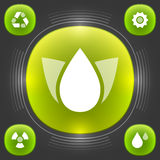 Eco Web Icons Design. Vector Elements. Green Trees Flat Illustration. EPS10 Stock Photo
