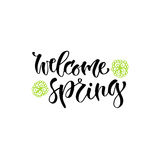 Modern vector lettering. Welcome spring. Printable calligraphy phrase. Royalty Free Stock Photos