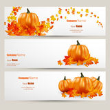 Modern Vector set of colorful autumn leaves and pumpkins bannFlat style website design with green apple illustration, Vector EPS10 Stock Photography