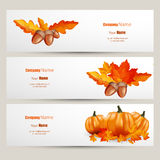Modern Vector set of colorful autumn leaves and pumpkins bannFlat style website design with green apple illustration, Vector EPS10 Stock Photos