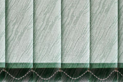 Modern vertical blinds on window. Modern vertical blinds on the window of the office Royalty Free Stock Photography