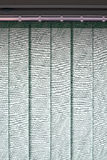 Modern vertical blinds on the window. Vertical blinds on the window of the office Royalty Free Stock Image