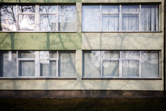 Modern wall with some windows. And a shadow of a tree Royalty Free Stock Photos