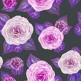Modern watercolor roses with leaves seamless pattern on dark background royalty free illustration