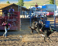 Modern Western Rodeo Event. Modern day western rodeo event in southwestern Utah Stock Images