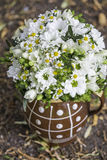 Modern white wedding bouquet. Made of daisys Royalty Free Stock Photos