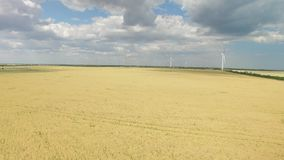 Modern wind turbines generating green energy in a wheat field. Aerial survey. Modern wind turbines generating green energy in a wheat field under a blue sky with stock footage