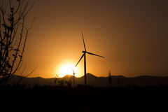 Modern Windmill Turbine or Wind Power in sunset Royalty Free Stock Photo