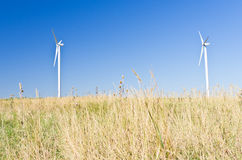 Modern windmills at flat land of Banat region Royalty Free Stock Image