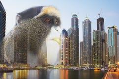 The modern world through the eyes of a monkey. Royalty Free Stock Photos