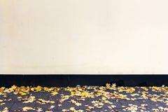 Modern yellow plaster street wall stock photo