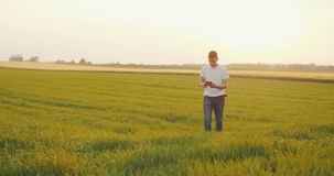 Modern Young Farmer using digital tablet on agricultural field. stock video