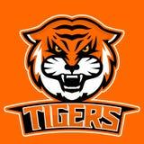 Modern yrkesmässig logo för sportlag Tigermaskot Tigrar vektorsymbol på en mörk bakgrund Royaltyfri Bild