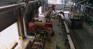 Modern zaagmolen algemeen plan, heel wat mensen die bij een houtbewerkingsfabriek werken stock video