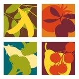 Moderna abstrakta frukt- och grönsakdesigner Arkivfoton