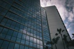 Moderna byggnad och palmträd i Long Beach Fotografering för Bildbyråer