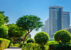 Moderna byggnader i den Dubai marina UAE Royaltyfri Bild