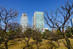 Moderna byggnader i Tokyo, Japan Royaltyfri Bild