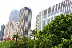 Moderna byggnader och träd Arkivbild
