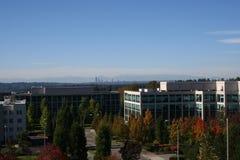 Moderna kontorsbyggnader i höst Arkivbild
